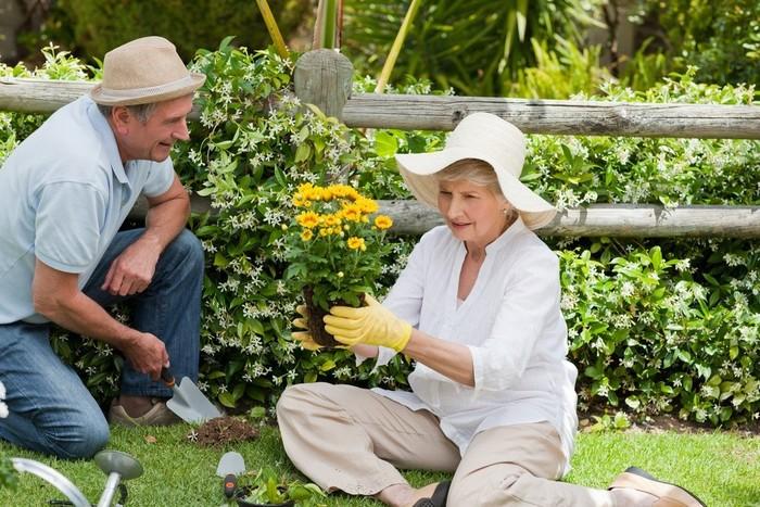 couple de personnes âgées jardinage