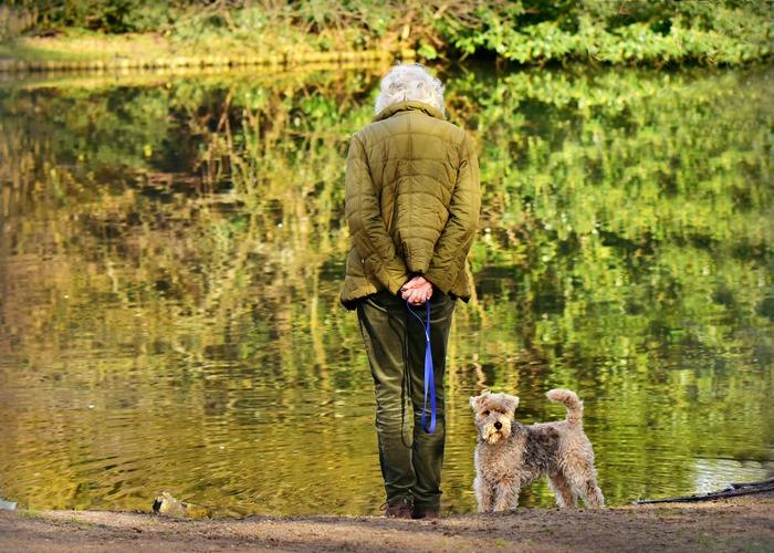 femme plus âgée promener un chien près d'un lac