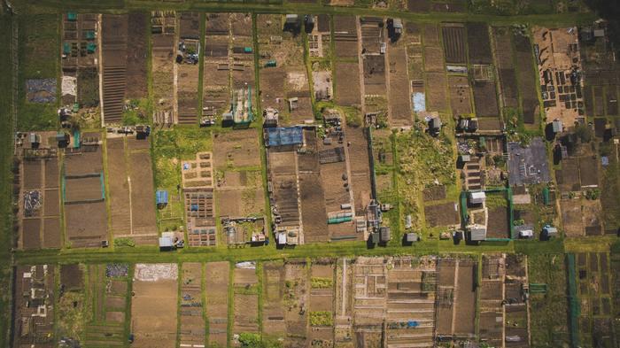 vue aérienne de allotment.jpg