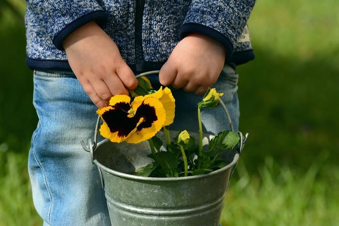 Enfant portant une plante